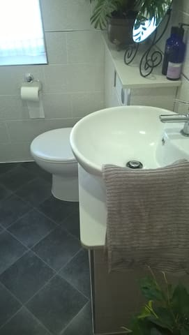 Private ensuite bathroom with shower.   Shampoo  and soap supplied.
