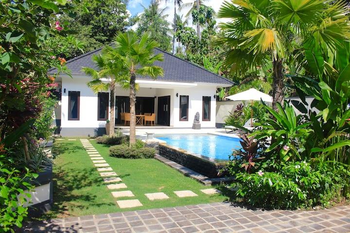 Villa Kupu Kupu Lovina