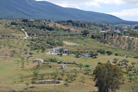 Guesthouse Casa Emiel Luna - Alhaurin el Grande