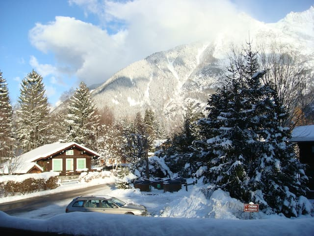 Chalet - 200 m from the slopes