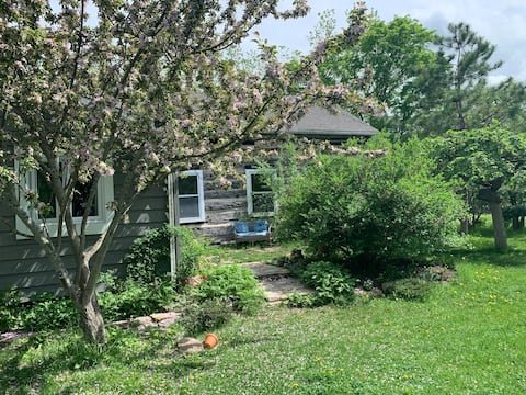 Blueberry Creek Family Retreat and Farm Stay