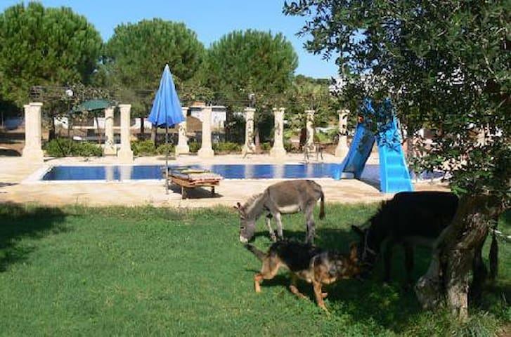Villa Leucasino..total relax a due passi dal mare! - Gagliano del Capo - 別荘