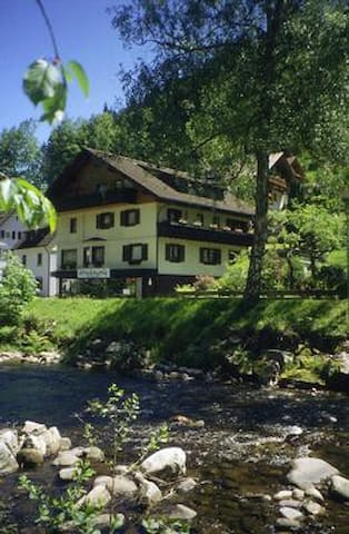 Holiday apartment in a sleepy little village nestling in the trees of the Northern Black Forest