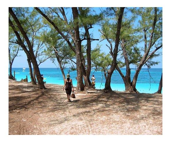 1 Bed/1 Bath Near Atlantis, the Best Beach & More - Nassau - Lägenhet