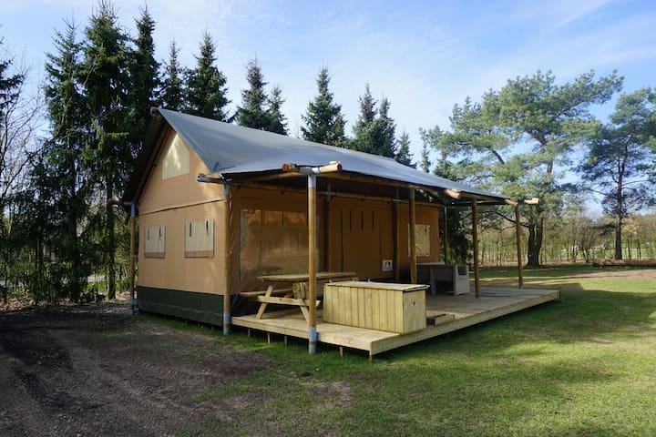 Glamping Lodgetent - Otterlo - Tenda