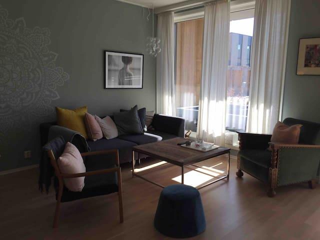 Nice 2 bedroom apt Fornebu-15 min buss from Oslo