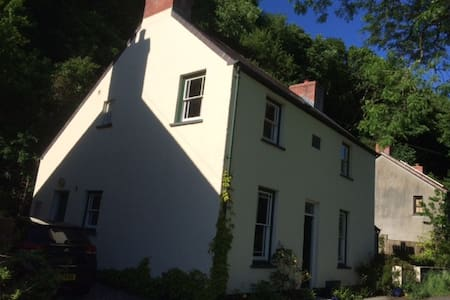Comfortable Family home Gwaun Valley