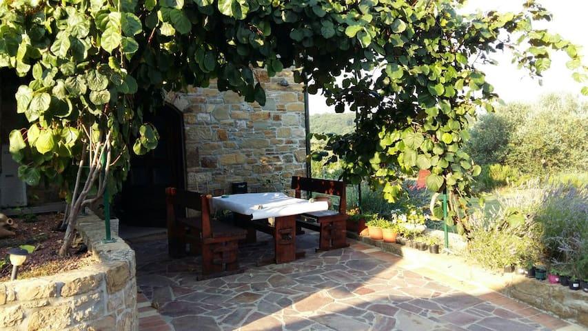 Stone tipical istrian house - Nova Vas nad Dragonjo - Casa