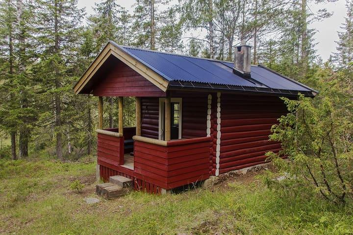 Flåputten i Finnemarka - Modum - Apartment
