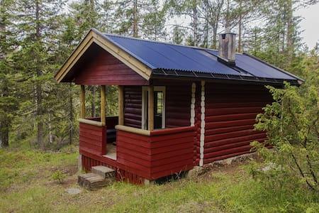 Flåputten i Finnemarka - Modum