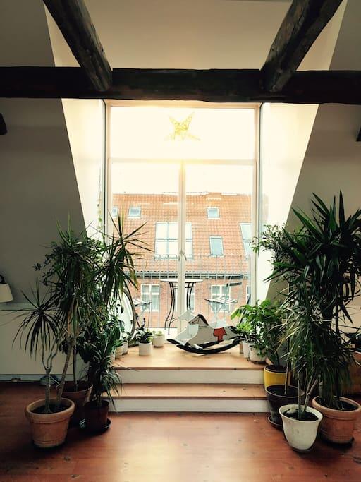 Fifth floor: view of balcony