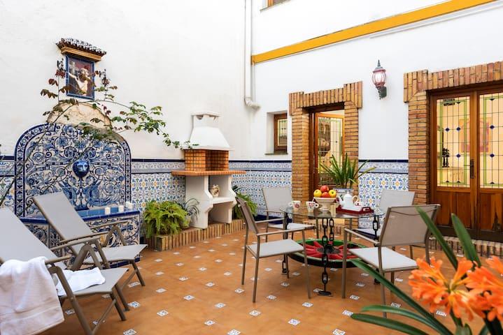 Santa Cruz quarter, Sevillian house and courtyard