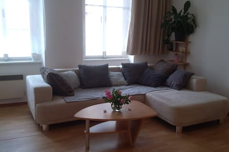 Beautiful apartment in the center of Pisek