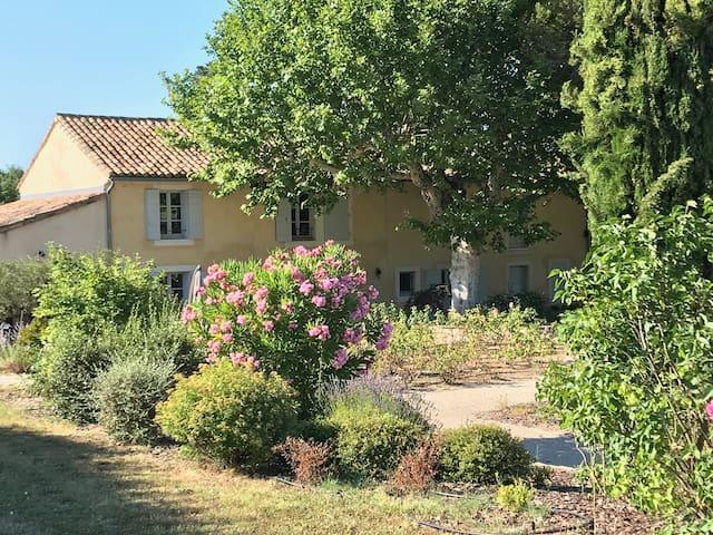 Mas du Fanal, entre  Avignon et Les Alpilles