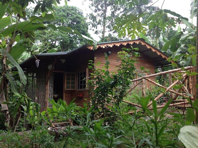 casa ediana - Trindade - Bungalo