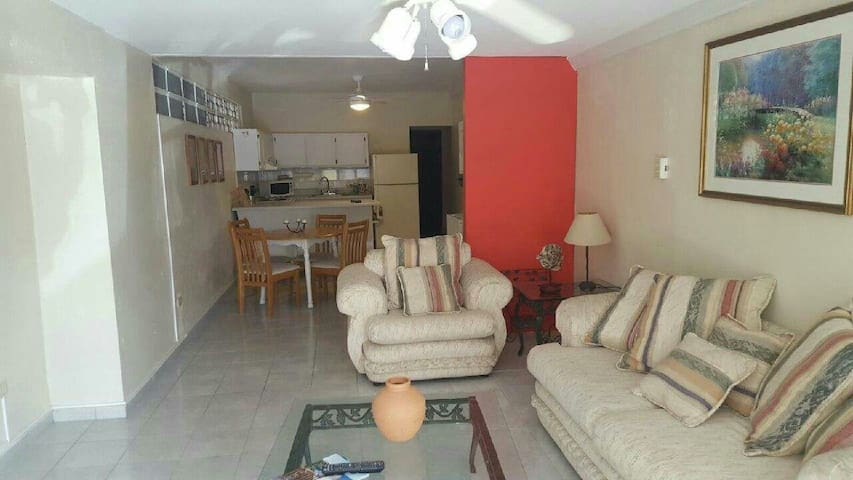 Charming, private 2 Bedroom, 1 Bath apartment - Guaynabo - Pis