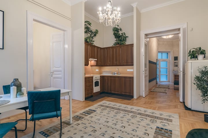 St. Lukacs luxury home in the Downtown with AC