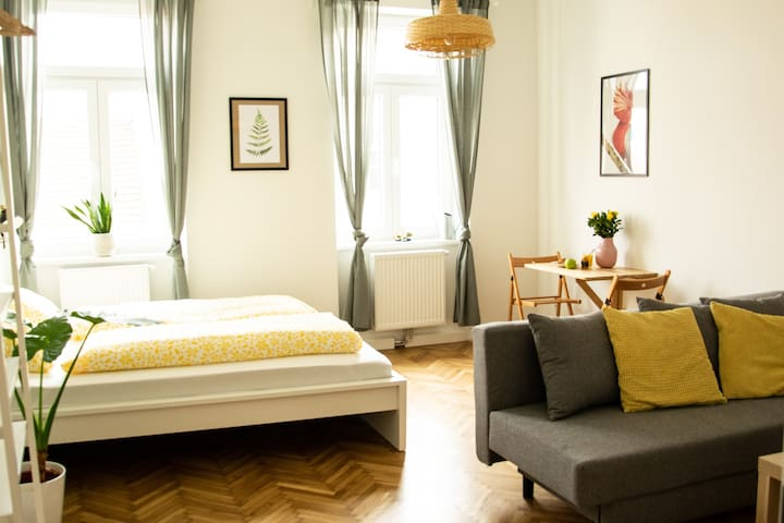 Well equipped and bright studio near city center