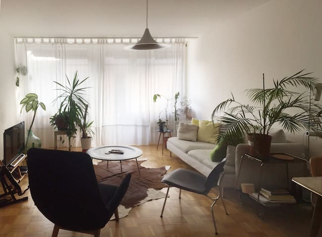 Basel - room in bright & modern apartment, terrace