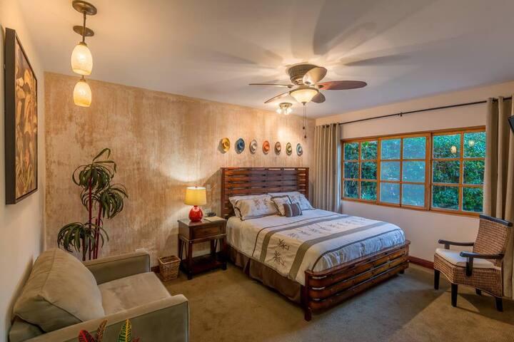 Hotel Buena vista - Deluxe Standard King Bed