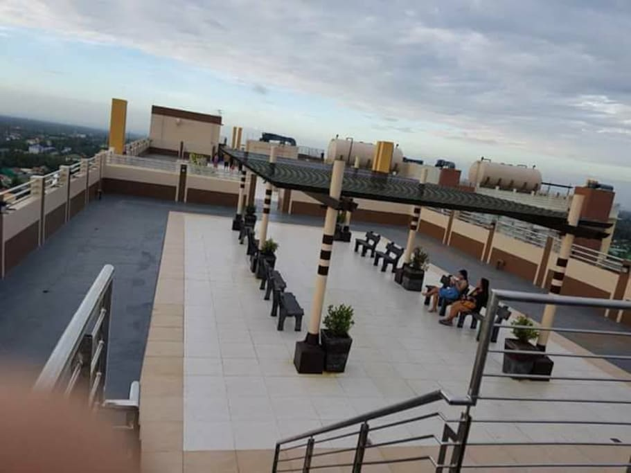 Rooftop Deck Garden