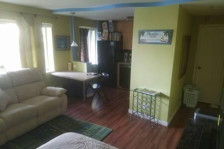 Business / Couples Retreat Buckhead IDEAL Location - Atlanta - Apartament