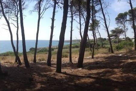 casa vacanze - Provincia di Taranto - 獨棟