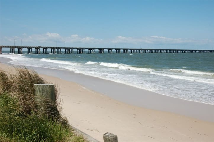Virginia Beach 2 King BR apt 100 feet from beach