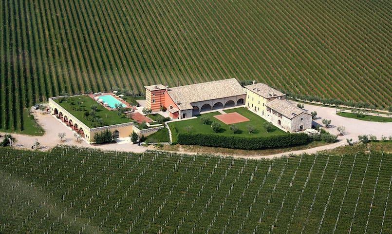 Tenuta La Presa - Double Room - Caprino veronese - Aamiaismajoitus
