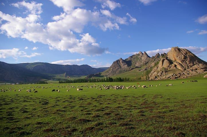 Bayankhad Astronomical Tourist camp - Ulaanbaatar - Yurt