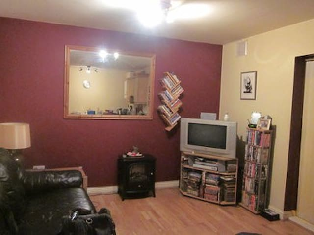 Welcoming & warm 2 bed apartment near city centre! - Dublin - Appartement