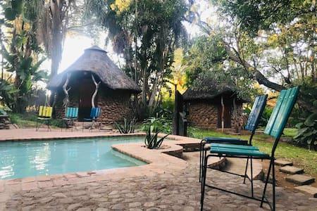 Rhino Family Unit @ Bush Baby Lodge, Tshipise