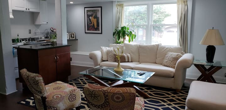 Entire Apartment in the Heart of Midtown Atlanta