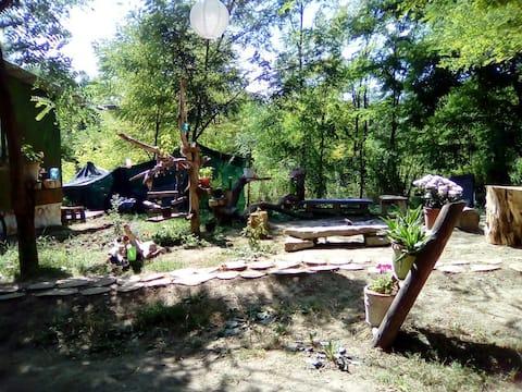 PureNature Campsite-RV/Tent 3km from Sighisoara