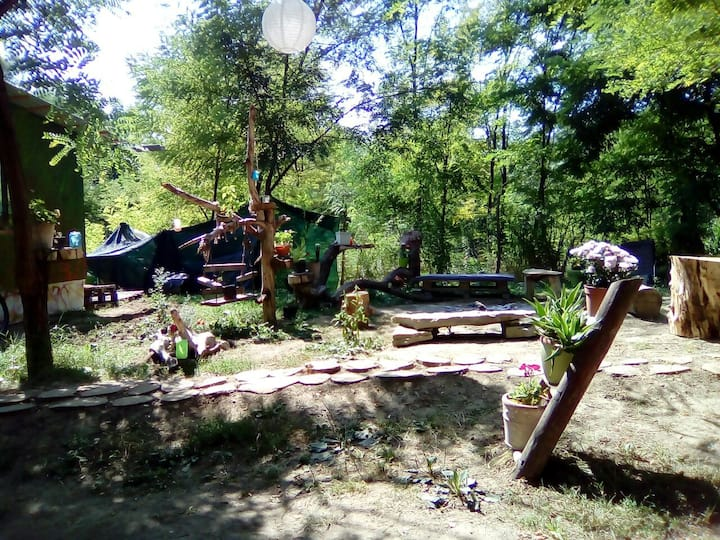 PureNature Campsite-RV/Tent 3km from Sighisoara