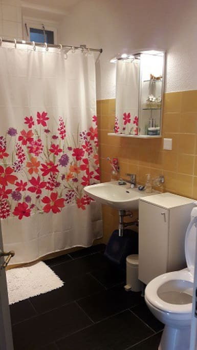 This is the shared bathroom. Shower or bath.