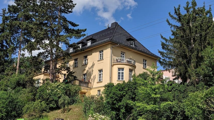 Großzügige Wohnung in Gründerzeitvilla