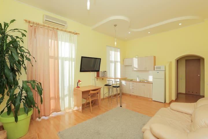 Apartment on Sofievska street near Maidan Square