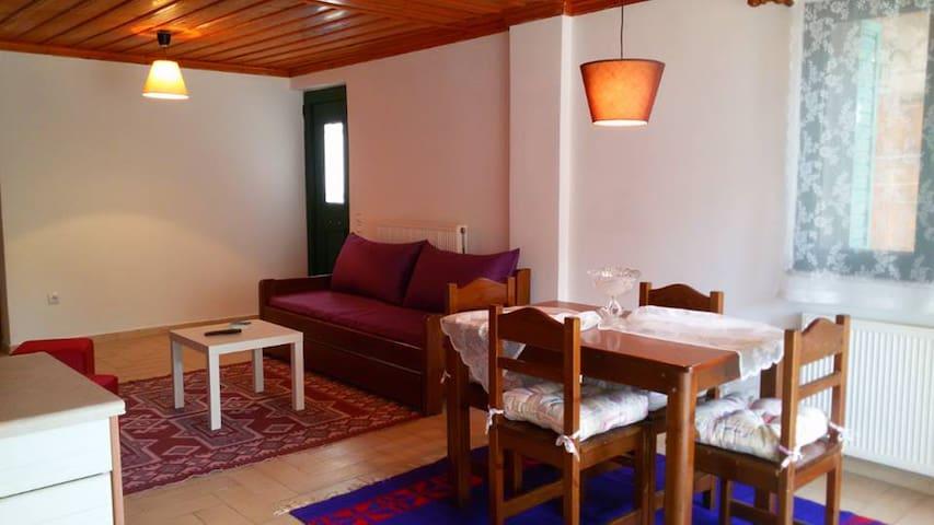 Παραδοσιακό πέτρινο διαμέρισμα 2 - Dimitsana