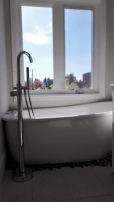 Master Washroom Free standing Bath tub