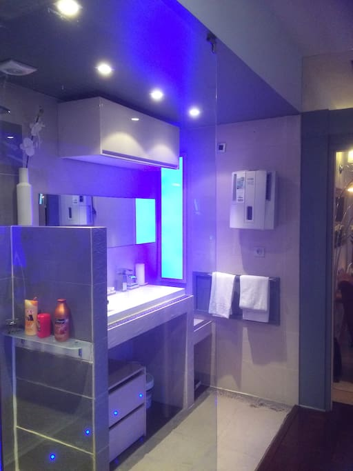 Large & design Bathroom
