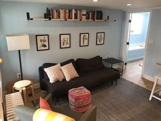 Bright newly renovated 1br in Capitol Hill