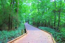 Greenway in Ballantyne