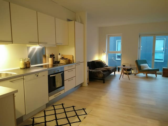 New and cozy apartment close to Copenhagen