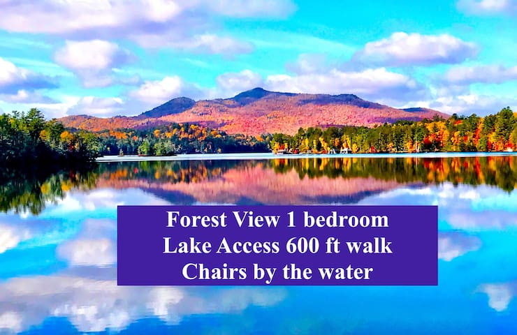 Forest View Lake access 600ft 1 bedroom apartment