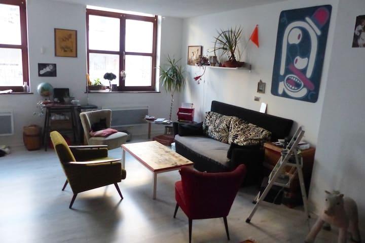 Appartement spacieux Strasbourg (Schiltigheim)