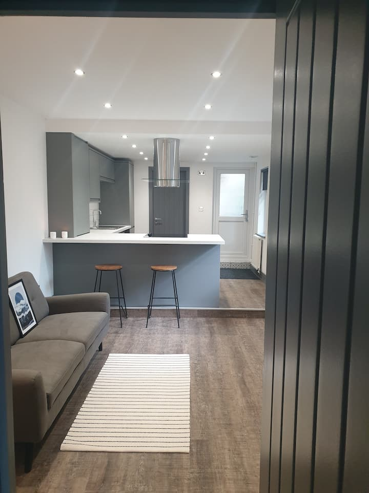 Newly Renovated Apartment in Central Swansea