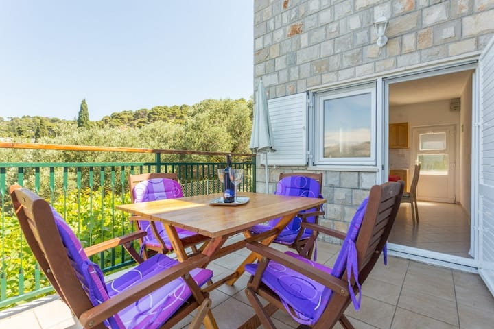 NEW LISTED Perfect view apartment 1
