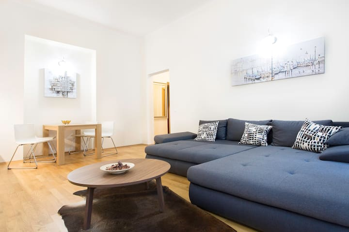 Comfortable and cozy apartment in Prague-center