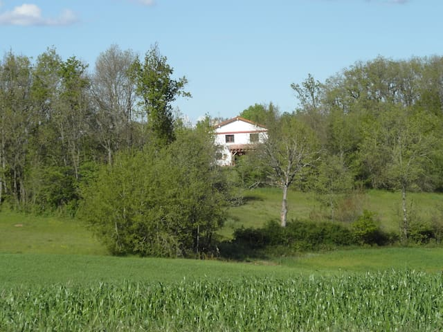 Maison de campagne with private pool 11x5 metres